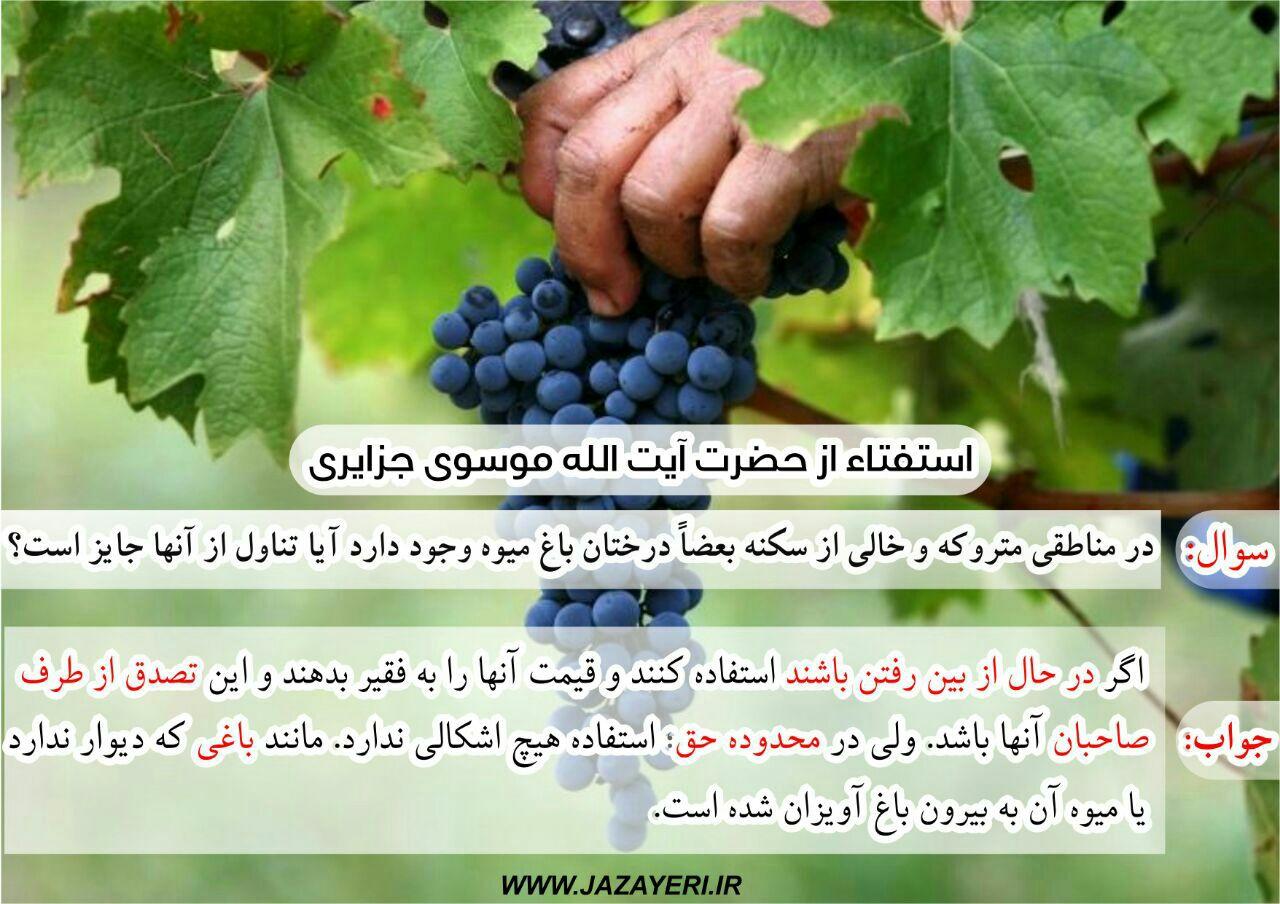 در مناطق متروکه وخالی از سکنه بعضاً درختان باغ میوه وجود دارد آیا تناول از آنها جائز است؟